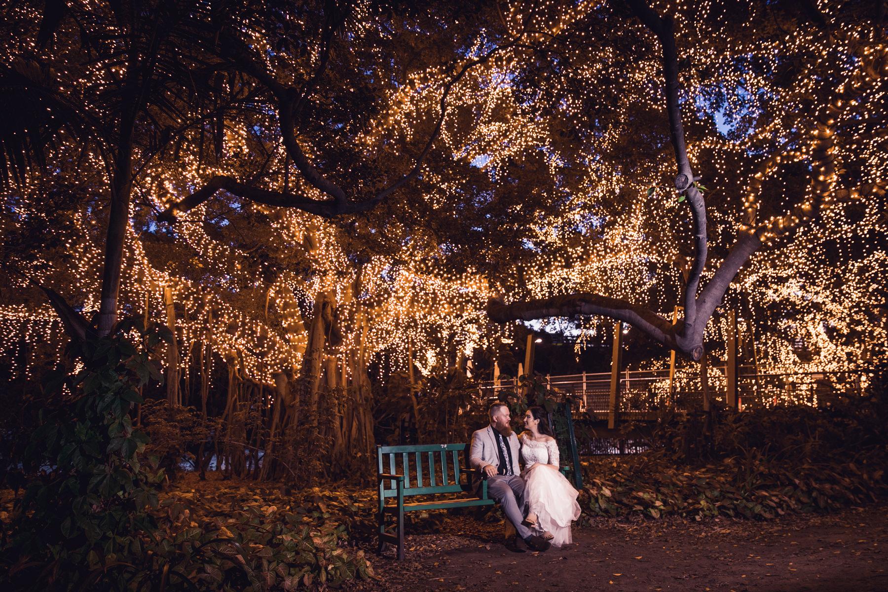 Bride and Groom under massive fig tree